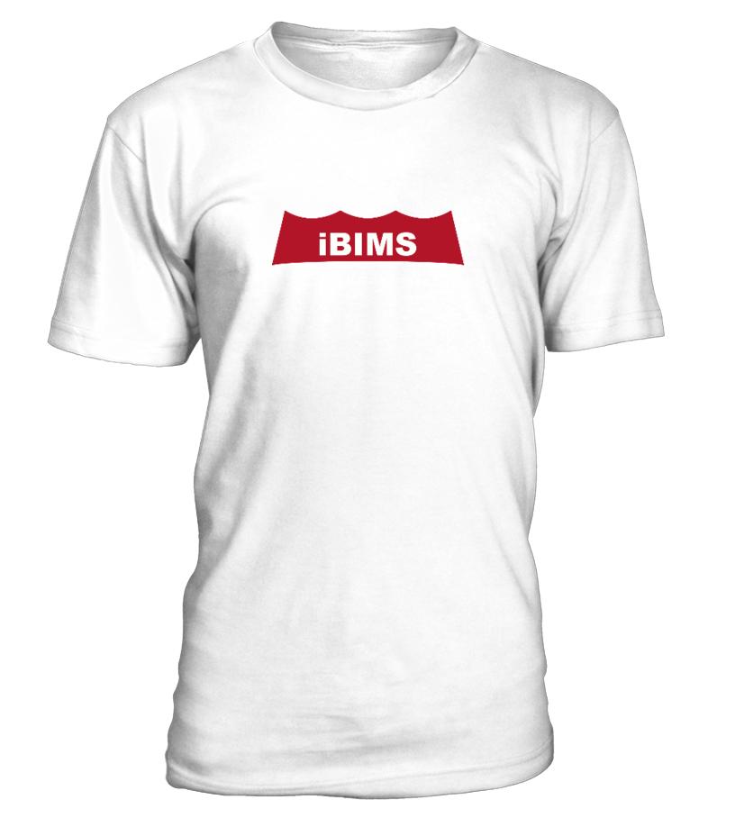 iBims